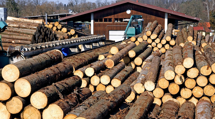 log piles at lumber mill